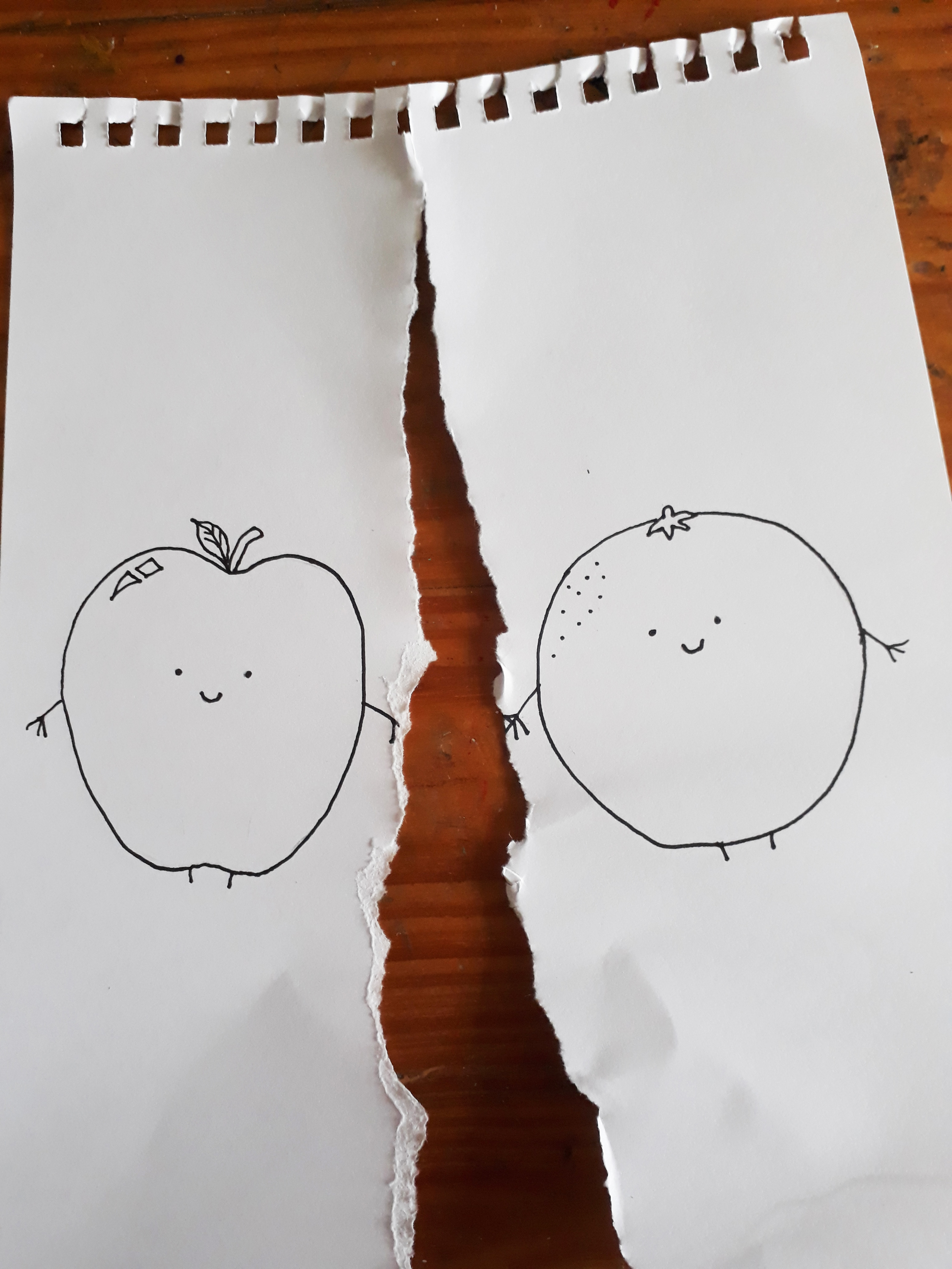 apple orange 1